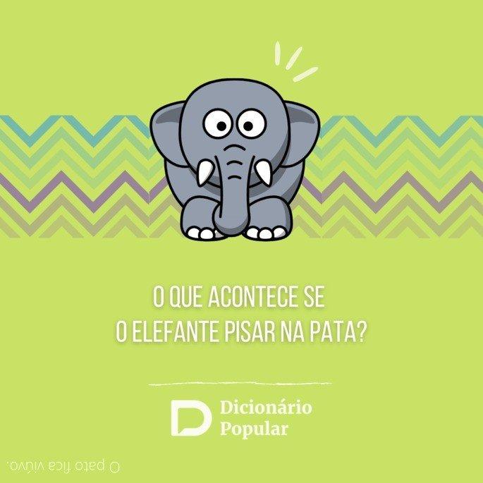 Charada engraçada sobre elefante pisar na pata