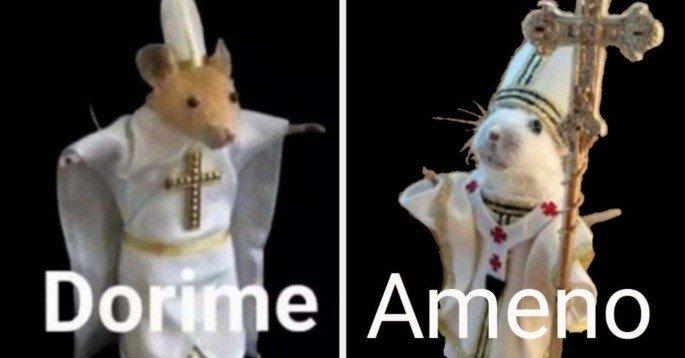 Meme dorime