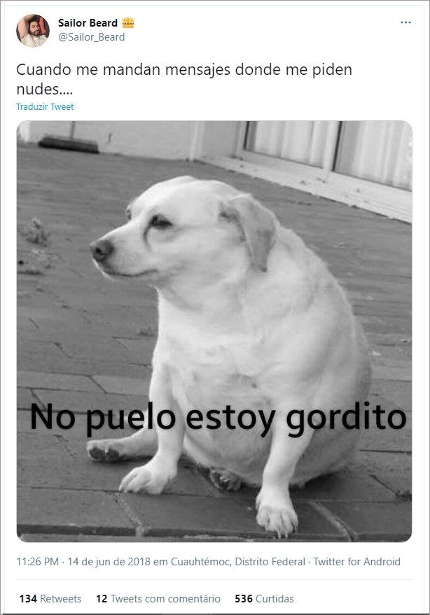 Tweet com foto de cachorro e meme do non puedo, estoy gordito