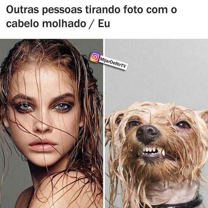 Cachorro com pelo molhado comparado a mulher sensualizando de cabelo molhado