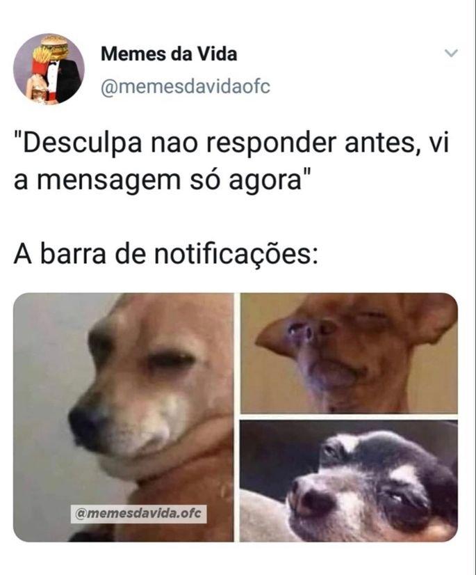 Meme cachorro julgando a pessoa que diz que não viu a mensagem