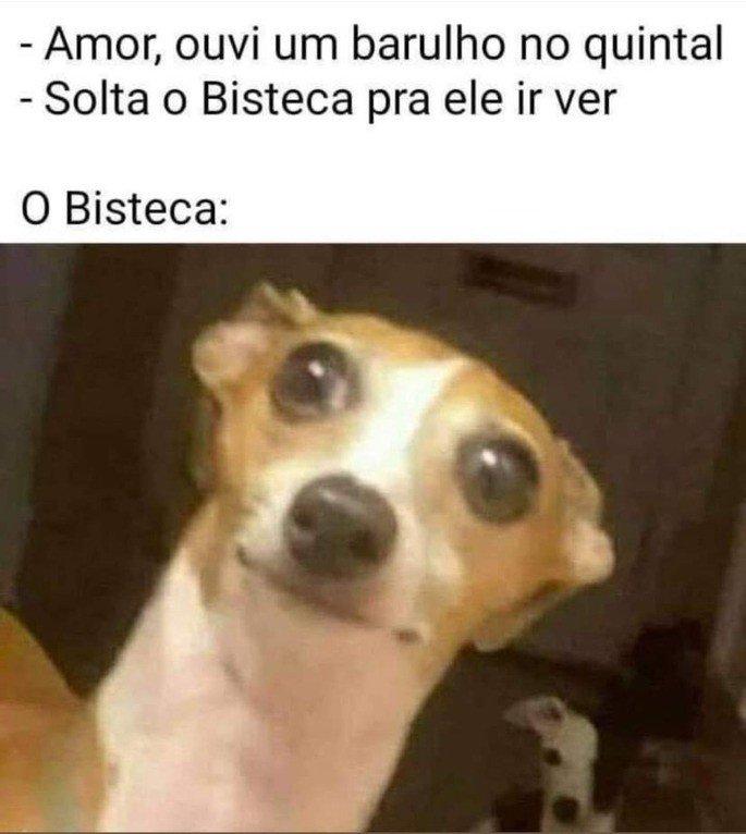 Bisteca, o cão covarde