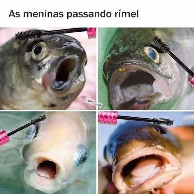 Meme com peixes imitando as meninas passando rímel
