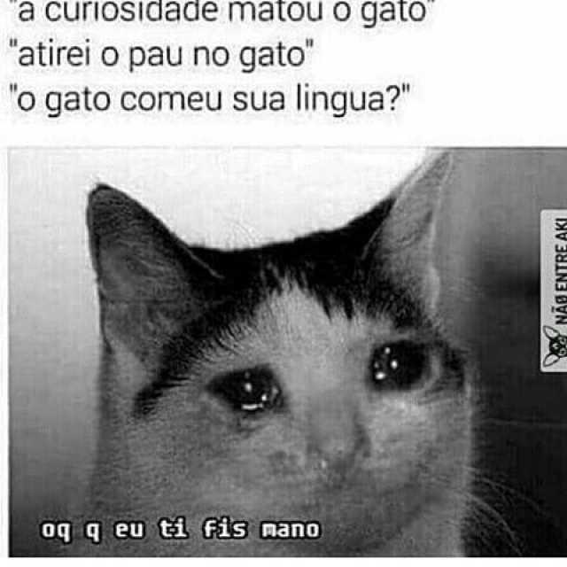 Meme gato triste