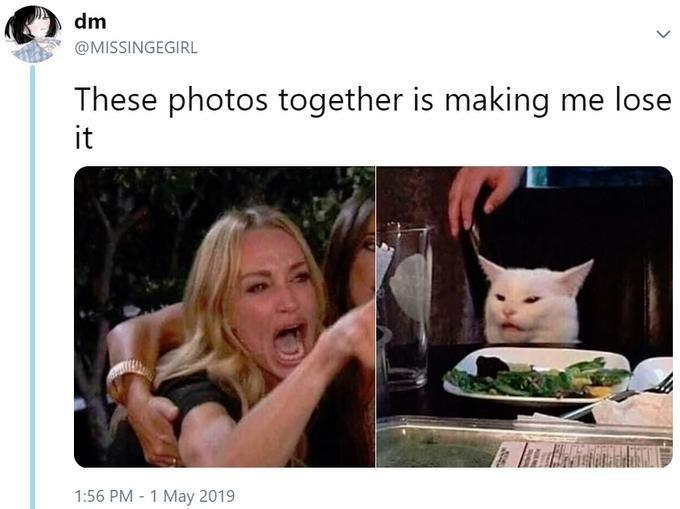 Tweet que deu origem ao meme da mulher gritando com um gato