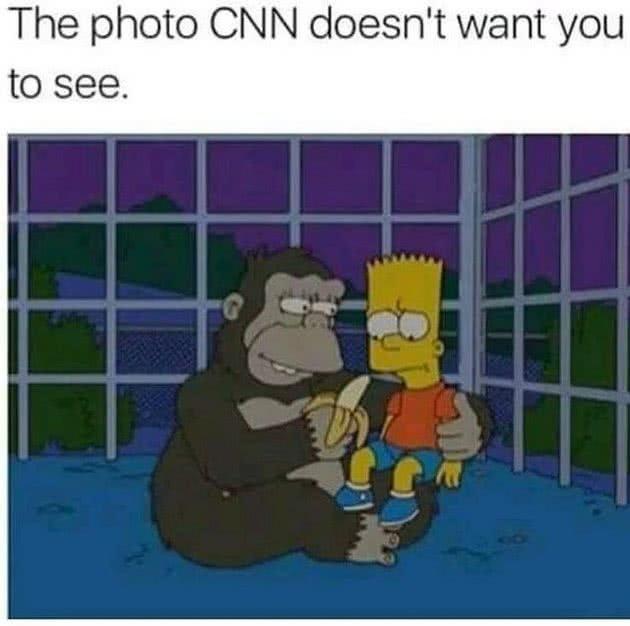 memes harambe 2