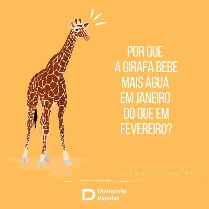 Perguntas de duplo sentido sobre girafa