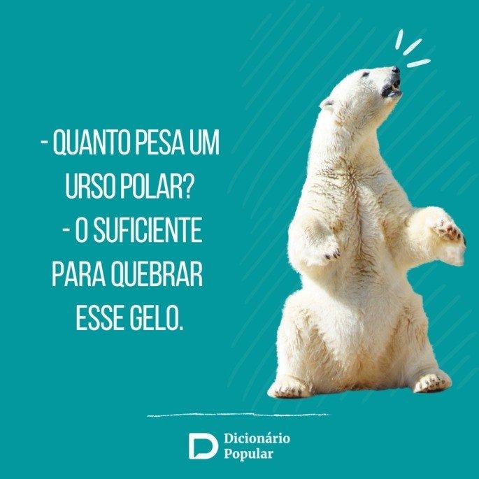 Pergunta de duplo sentido sobre urso polar