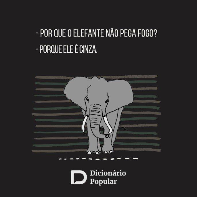 Piada idiota do elefante