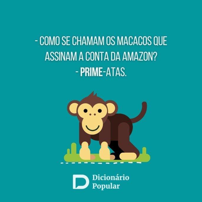 Piada sem graça sobre macaco assinante da Amazon