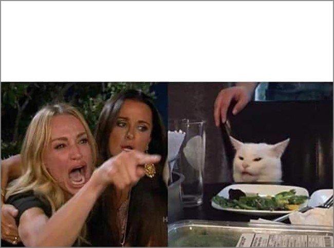mulher gritando com o gato mesa meme